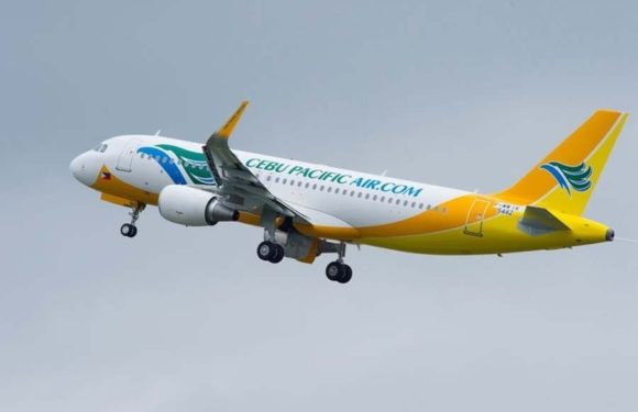 Civil Aeronautics Board grants Cebu Pacific additional entitlements to the UAE and other international destinations