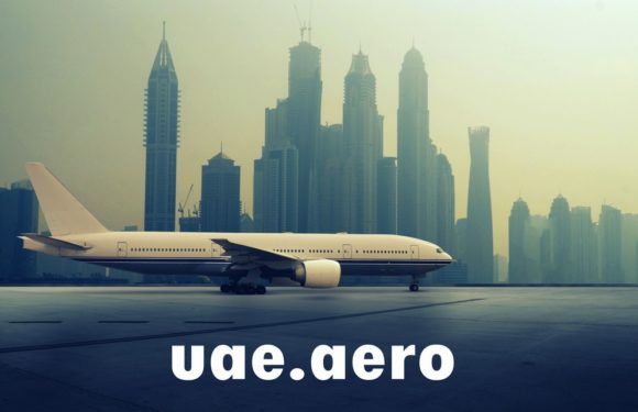 Бизнес авиация в ОАЭ: разрешения на посадку и перелет